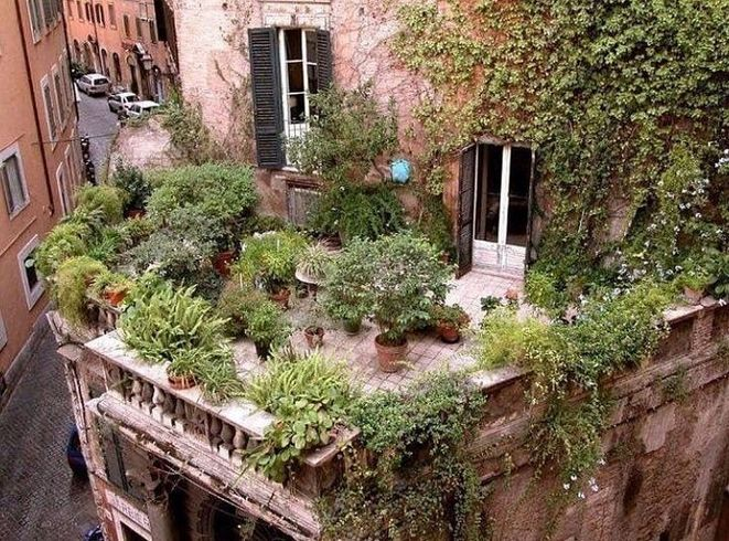 26+ What You Can Do About Roof Top Garden Starting in the Next Five Minutes